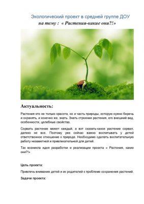 thumbnail of Экологический проект в средней группе ДОУ